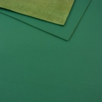 1.4mm Jade Green Leather 30x60cm