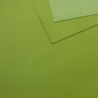 1mm Smooth Cowhide Apple Green A4