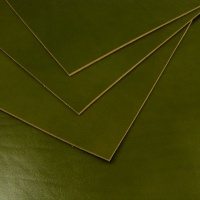 2.2mm Glossy Green Vegetable Tanned Leather 30x60cm