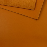 2mm Smooth Light Tan Cowhide A4
