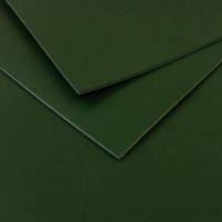 3mm Green Vegetable Tanned Cowhide A4