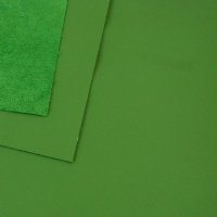 0.6mm Bright Green Cow Nappa A4