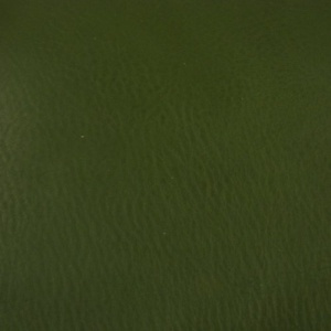 1.5mm Green Soft Feel Vegetable Tanned Leather 30 x 60cm