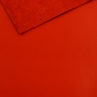 2mm Smooth Red Cowhide A4