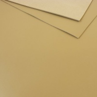 1.2 - 1.4mm Beige Calf Leather 30 x 60cm