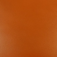 1.2 - 1.4mm Tan Calf Leather 30 x 60cm