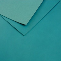 2 - 2.5mm Turquoise Vegetable Tanned Leather 30 x 60cm Size